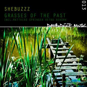 Shebuzzz 歌手頭像