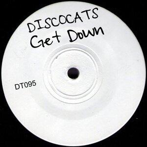 Discocats Foto artis