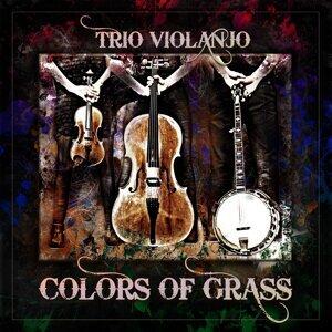Trio Violanjo Foto artis