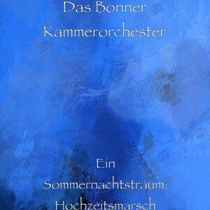 Das Bonner Kammerorchester Foto artis