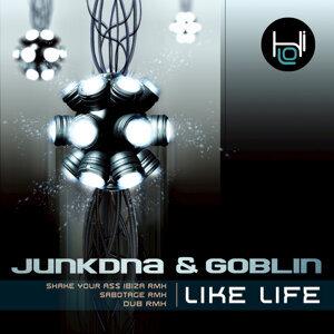Junkdna & Goblin Foto artis