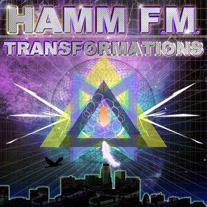 HAMM F.M. 歌手頭像