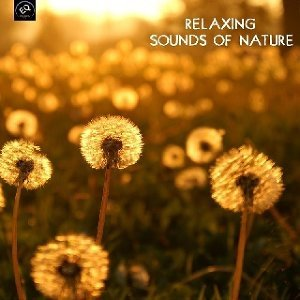 Relaxing Sounds of Nature White Noise for Mindfulness Meditation and Relaxation