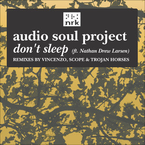 Audio Soul Project feat. Nathan Drew Larsen 歌手頭像