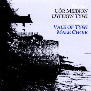Cor Meibion Dyffryn Tywi Male Voice Choir