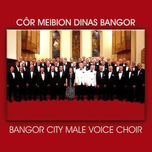 Cor Meibion Dinas Bangor City Male Voice Choir 歌手頭像