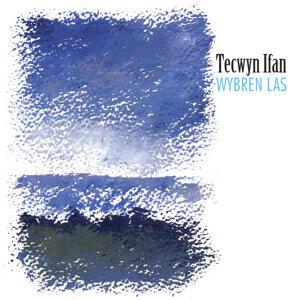 Tecwyn Ifan 歌手頭像