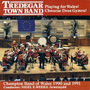 Seindorf Tredegar Band 歌手頭像