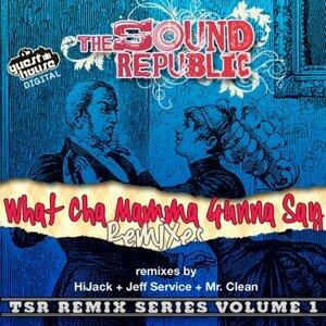 The sound republic 歌手頭像