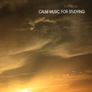 Calm Music for Studying 歌手頭像