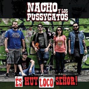 Nacho y los Pussygatos 歌手頭像