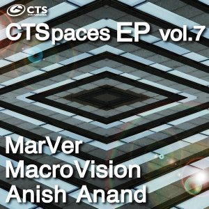 MarVer, MacroVision, Anish Anand 歌手頭像