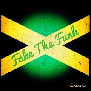 Fake The Funk 歌手頭像