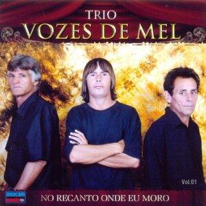 Trio Vozes de Mel 歌手頭像