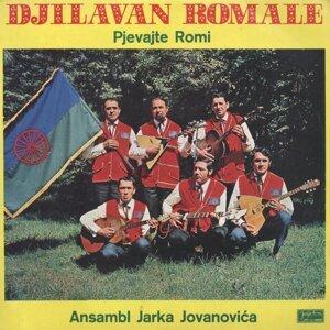 Ansambl Jarka Jovanovića 歌手頭像