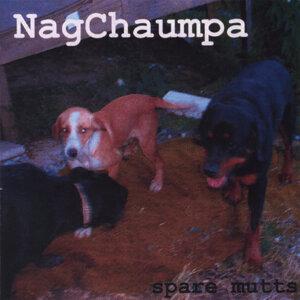 NagChaumpa 歌手頭像