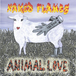 Naked Flames 歌手頭像