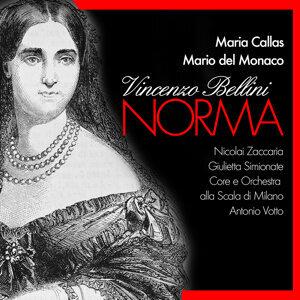 Bellini / Callas / Del Monaco 歌手頭像