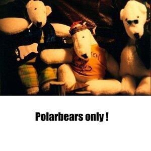 Polarbears 歌手頭像