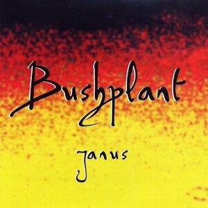 Bushplant 歌手頭像