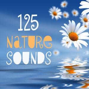 125 Nature Sounds 歌手頭像