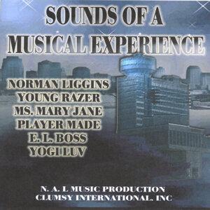 Normliggins Youngrazer Ms.maryjane Playermade E.l.boss Yogiluv 歌手頭像