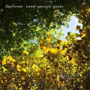 Dayflower 歌手頭像