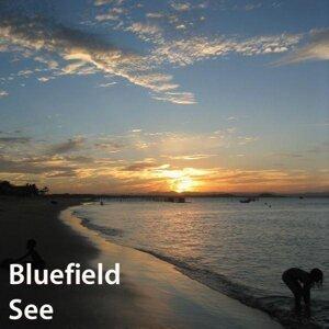 Bluefield 歌手頭像