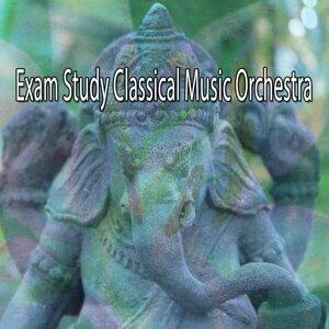Exam Study Classical Music Orchestra
