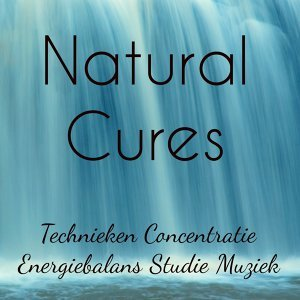 nature sounds relaxation & Mother Nature Sounds & Ontspanningsmuziek 歌手頭像