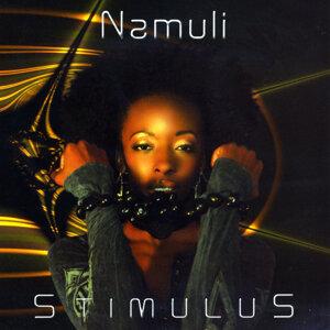 Namuli 歌手頭像