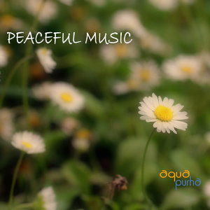 Peaceful Music Orchestra