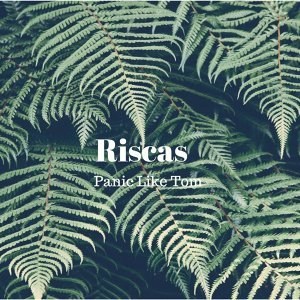 Riscas 歌手頭像