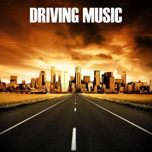 Driving Music Specialists 歌手頭像
