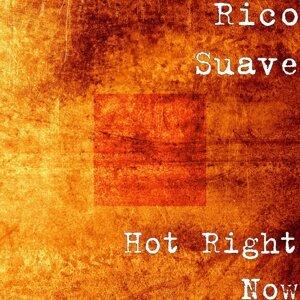 Rico Suave 歌手頭像