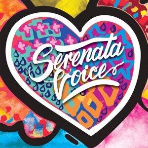 Serenata Voice 歌手頭像