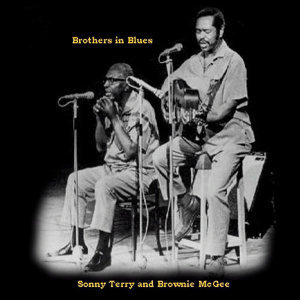 Sonny Terry and Brownie McGhee 歌手頭像
