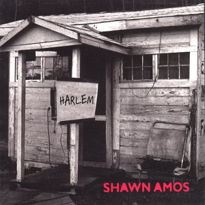 Shawn Amos 歌手頭像