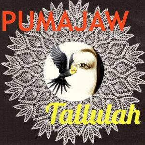 Pumajaw 歌手頭像