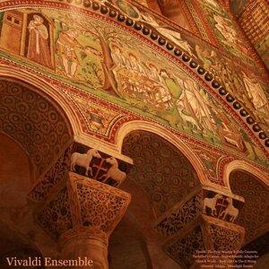 Vivaldi Ensemble, Stu Thoy 歌手頭像