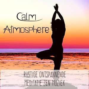 Healing Music Spirit & Radio Meditation Music & Soothing Music for Sleep Academy 歌手頭像