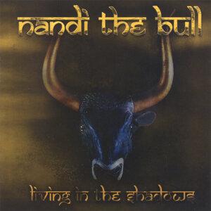 Nandi the Bull 歌手頭像