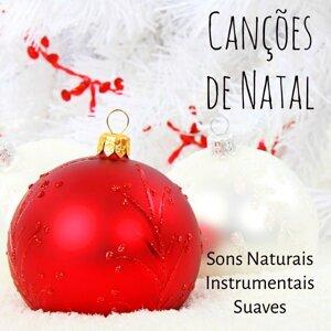 Canções de Natal & Canciones Infantiles de Niños & Astro del Ciel 歌手頭像