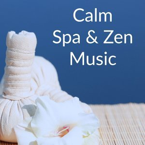 Relajacion Del Mar, Meditation Zen Master, Zen Meditate 歌手頭像