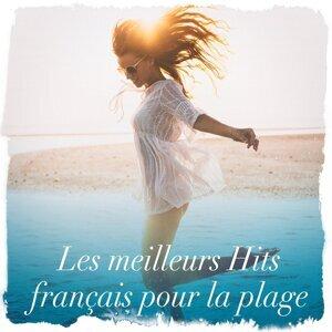 Le meilleur de la pop française 歌手頭像