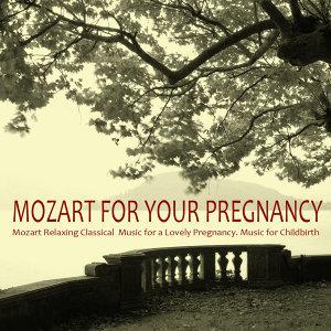 モーツァルト古典的な緩和オーケストラ 歌手頭像