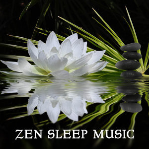 Zen Sleep Music Specialist 歌手頭像