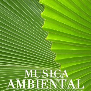 Musica Ambiental Clube