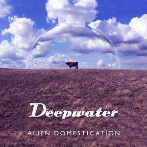 Deepwater 歌手頭像