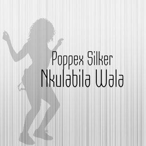 Poppex Silker 歌手頭像